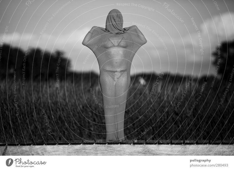 abstract bodies (1) Mensch Frau Himmel Natur Jugendliche Pflanze Einsamkeit Wolken Landschaft Erwachsene Leben Junge Frau Küste 18-30 Jahre Körper Sträucher