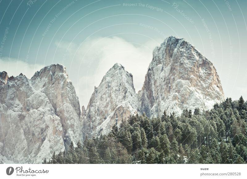 Stille Riesen Himmel Natur Ferien & Urlaub & Reisen Wolken Winter Landschaft Wald Umwelt Berge u. Gebirge kalt Schnee Frühling Klima authentisch Idylle Urelemente