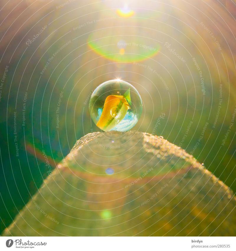 Am Murmelberg 7 Farbe oben Stein hell Glas glänzend Fröhlichkeit leuchten ästhetisch Schönes Wetter rund Spielzeug positiv Kinderspiel