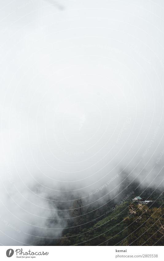 Im Nebel ruhig Abenteuer Ferne Freiheit Expedition Natur Landschaft Luft Wetter Sträucher Wald Urwald Hügel Berge u. Gebirge Costa Rica Haus außergewöhnlich
