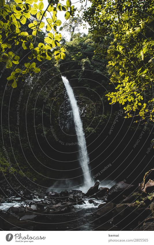 Wasserfall harmonisch Erholung ruhig Freizeit & Hobby Ferien & Urlaub & Reisen Ausflug Abenteuer Freiheit Expedition Sommer Sommerurlaub Natur Landschaft
