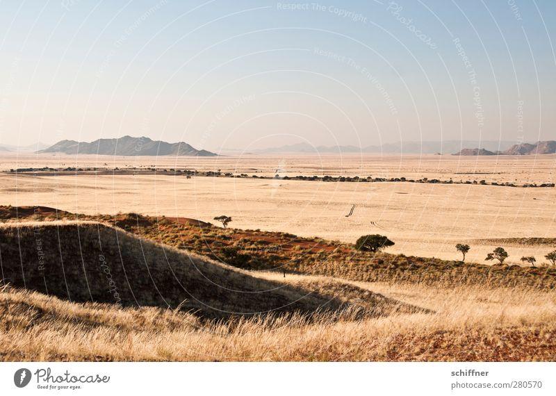 Reifenspuren Natur Landschaft Wolkenloser Himmel Wüste trocken Aussicht Ferne Hügel Steppe Düne Dünengras Stranddüne Horizont Trockenfluss Namib Namibia Safari