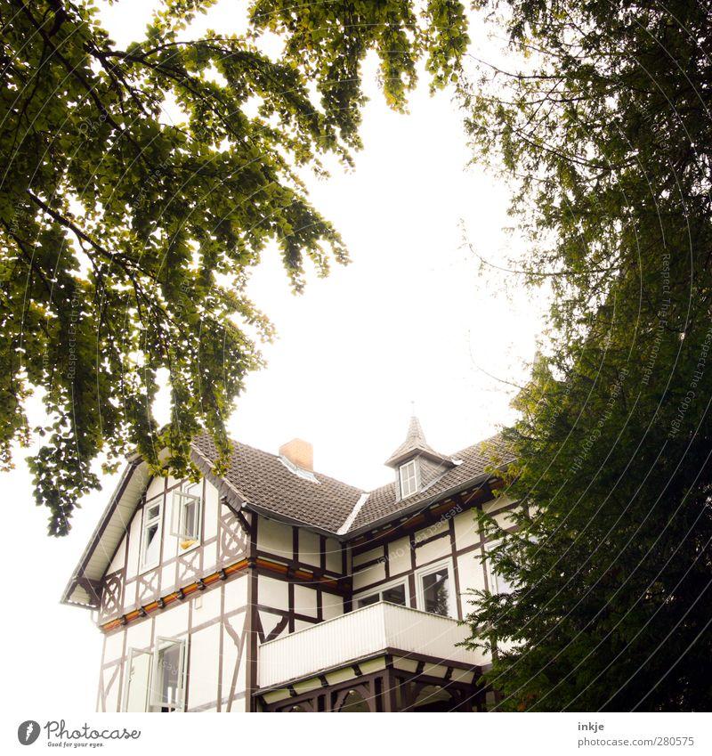 Unser Haus, Lifestyle Reichtum Häusliches Leben Traumhaus Fachwerkhaus Fachwerkfassade Frühling Sommer Schönes Wetter Baum Garten Park Stadtrand Menschenleer