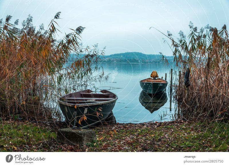 Ankunft Ferien & Urlaub & Reisen Tourismus Landschaft Herbst Schilfrohr Seeufer Bodensee Bootsfahrt Ruderboot Stimmung Idylle ruhig Horizont Farbfoto