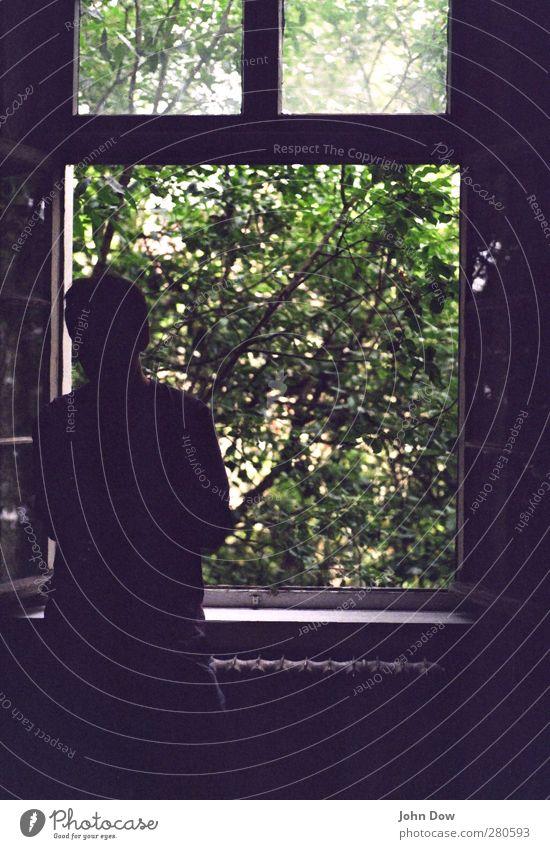 Zwischenwelt Häusliches Leben Wohnung Raum Körper 1 Mensch Pflanze Baum Sträucher stehen geheimnisvoll Vergangenheit Vergänglichkeit Fenster offen Aussicht