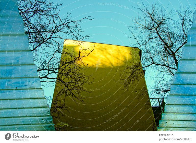 Nachzügler Himmel Wolkenloser Himmel Herbst Winter Klima Klimawandel Wetter Schönes Wetter Stadt Hauptstadt Stadtzentrum Haus Bauwerk Gebäude Architektur Mauer
