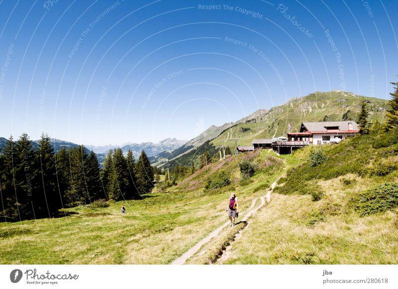 Isenau Natur Ferien & Urlaub & Reisen Sommer Pflanze ruhig Landschaft Wald Erholung Berge u. Gebirge feminin Gras Freiheit Baby wandern Ausflug Urelemente