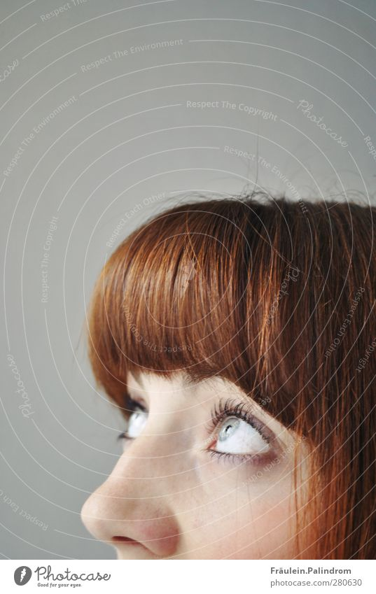 Obacht! feminin Junge Frau Jugendliche Erwachsene Haare & Frisuren Auge Nase 1 Mensch 18-30 Jahre brünett rothaarig Pony beobachten bedrohlich gigantisch groß
