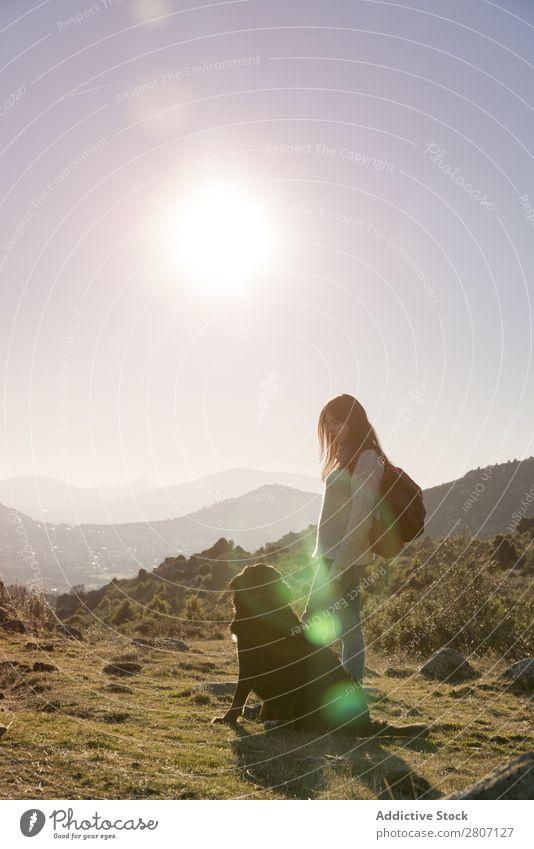 Die Frau mit ihrem Haustier betrachtet den Sonnenuntergang von der Spitze des Hügels aus. Hund Mädchen schön Natur Mensch Gesundheit Sonnenlicht Liebe grün Gras