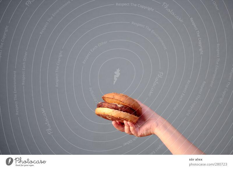 Belegtes Brötchen Hand Essen Gesundheit Lebensmittel Arme Gesundheitswesen Ernährung festhalten genießen Gastronomie Übergewicht Appetit & Hunger lecker