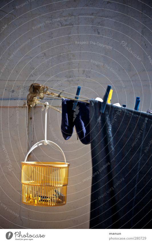 Wäschetrockner Ordnung authentisch frisch Lifestyle Häusliches Leben Sauberkeit einfach Wäsche waschen Wäsche trocknen Haushalt Wäscheleine Hof Waschtag Reinlichkeit Wäscheklammern