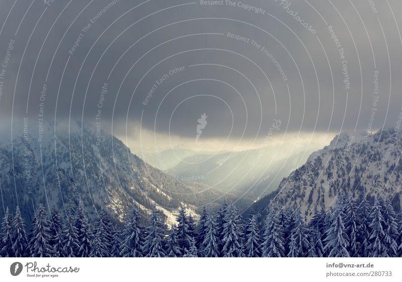 Winterwald Umwelt Natur Landschaft Wolken Gewitterwolken Eis Frost Schnee Baum Wald Hügel Felsen Alpen Berge u. Gebirge Gipfel wandern blau kalt Farbfoto