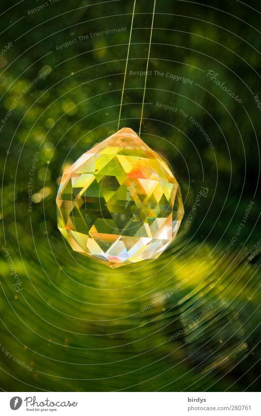 1000/2 Karat grün schön Pflanze Stil Kunst glänzend leuchten ästhetisch Dekoration & Verzierung rein positiv reich Kristalle Spinnennetz schwingen Kristallkugel