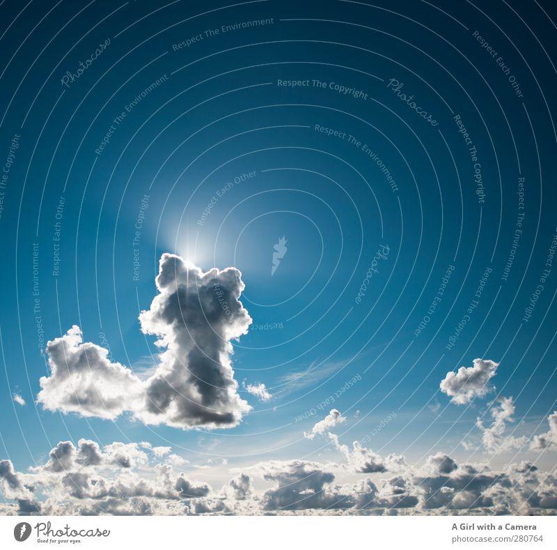 cloud number nine oder Wolke Sieben ?? Umwelt Natur Urelemente Luft Himmel nur Himmel Wolken Sommer Wetter Schönes Wetter leuchten blau Leichtigkeit Farbfoto