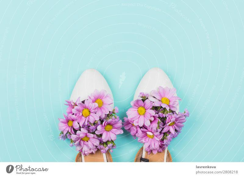 Damenschuhe gefüllt mit rosa Margeriten und Wildblumen. weiß Blütenblatt Feste & Feiern Pflanze hell natürlich schön geblümt Stil Pastellton Blume Kunst Schuhe