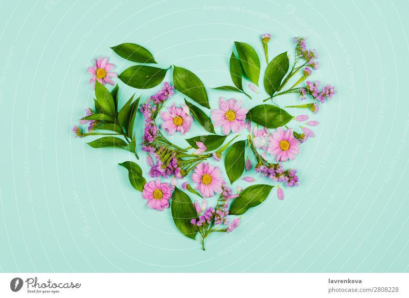Natur Sommer Pflanze grün Blume Blatt Hintergrundbild Liebe Frühling Dekoration & Verzierung Romantik Blumenstrauß Beautyfotografie Wiesenblume geblümt