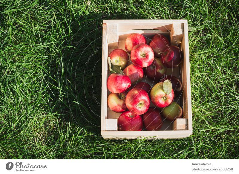 Flachlegen mit frischen reifen roten Äpfeln in einer Holzkiste flache Verlegung Gras Kasten Landwirt Farbe Außenaufnahme Diät Frucht lecker