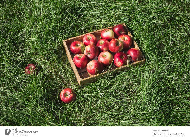 Flachlegen mit frischen reifen roten Äpfeln in einer Holzkiste Ackerbau Apfel Herbst Korb Kasten Farbe lecker Diät Landwirt flache Verlegung Lebensmittel Frucht