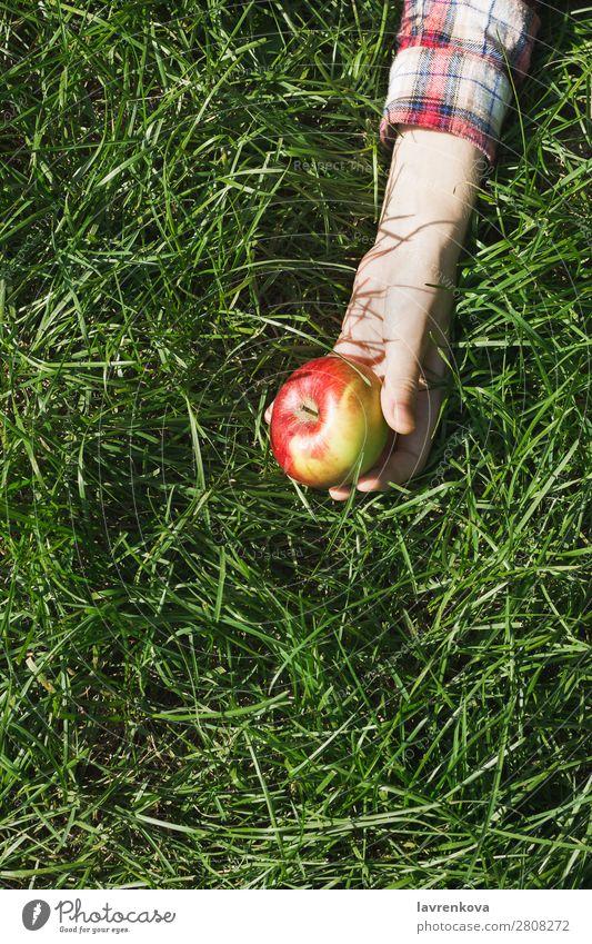 Frauenhand im karierten Hemd mit rotem Apfel auf Gras Natur Picknick pflücken Hand Farbe Wiese Außenaufnahme organisch Hintergrundbild Jahreszeiten Gesundheit