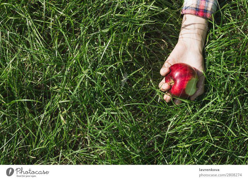 Flachliegend mit Frauenhand, die gebissenen Apfel hält. beißen kariert Natur Picknick pflücken Hand Gras Farbe Wiese Außenaufnahme organisch Hintergrundbild