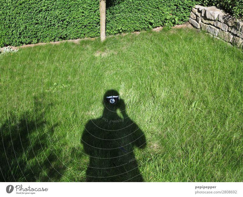 Schattengewächs Freizeit & Hobby Häusliches Leben Mensch maskulin Mann Erwachsene Körper 1 Gras Garten Wiese Haus Fotokamera grün Schattenspiel Farbfoto