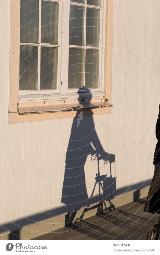 Schatten von einer Dame mit Rollator Frau Mensch alt Fenster Senior feminin Bewegung Freiheit Fassade Angst laufen Weiblicher Senior Sicherheit Risiko Krankheit