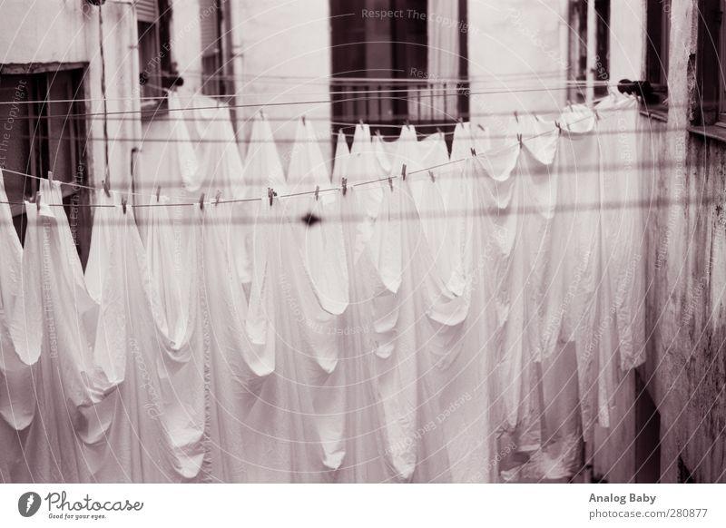 Wäschegeister Lifestyle alt ästhetisch außergewöhnlich elegant gruselig einzigartig schwarz weiß schön Wahrheit Ehrlichkeit authentisch Neugier Wäscheleine