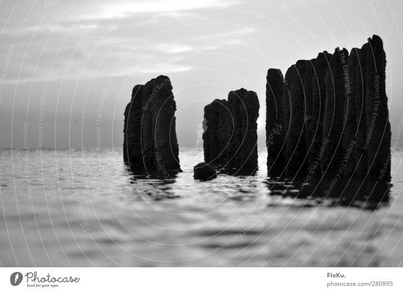 Es bleibt dann doch nur die Erinnerung Ferien & Urlaub & Reisen Sommer Strand Meer Wellen Umwelt Natur Urelemente Wasser Himmel Horizont Nordsee Holz nass grau