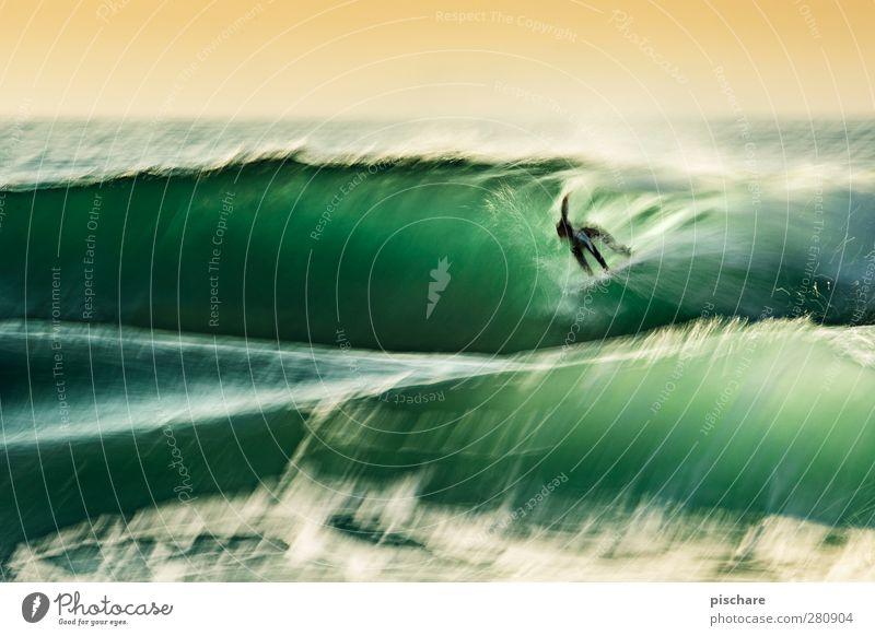 essence of surfing Mensch Natur Jugendliche Wasser grün Sommer Meer Freude Sport Bewegung Küste Junger Mann außergewöhnlich Wellen Freizeit & Hobby ästhetisch