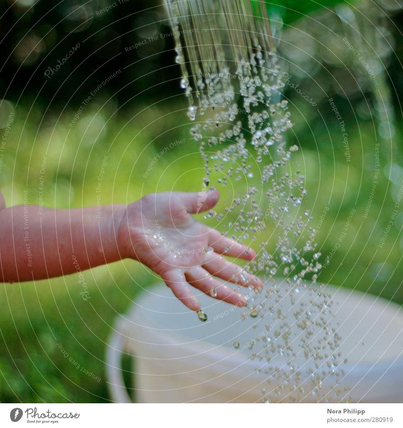 pura Mensch Kind Wasser grün Hand Sommer kalt Leben Spielen Gras Kindheit Baby Arme frisch nass Finger