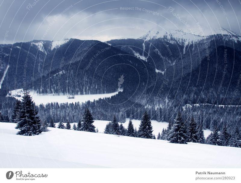 Es wird kälter Umwelt Natur Landschaft Himmel Wolken Winter Klima schlechtes Wetter Unwetter Eis Frost Schnee Schneefall Wald Berge u. Gebirge Gipfel