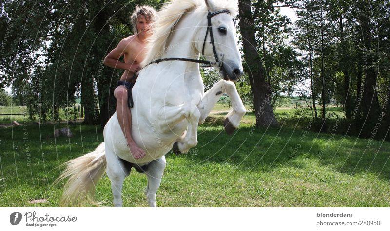 """""""Birk Borkason"""" Natur Jugendliche grün weiß Sommer Sonne Freude Tier Wiese Glück Junger Mann Körper blond natürlich Kraft Freizeit & Hobby"""