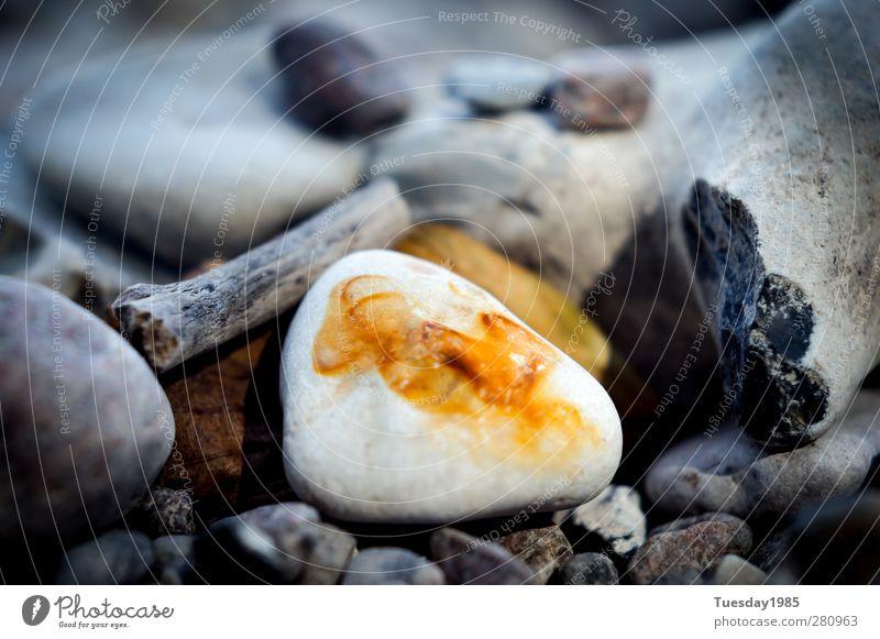 ein strahl hoffnung Natur Sommer Umwelt Frühling Herbst Sand Erde Kraft Erfolg Urelemente Optimismus Weisheit vernünftig Vogelperspektive Bewusstsein mehrfarbig