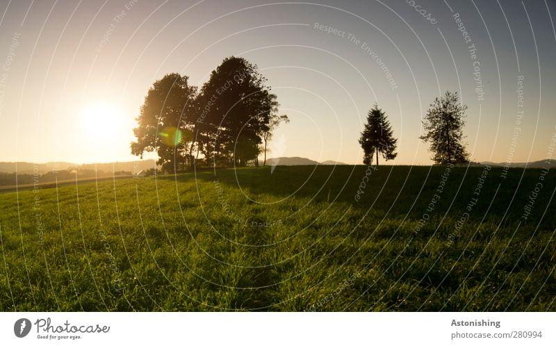 2 im Abseits! Umwelt Natur Landschaft Pflanze Erde Himmel Wolkenloser Himmel Sonne Sonnenaufgang Sonnenuntergang Sonnenlicht Sommer Wetter Schönes Wetter Wärme
