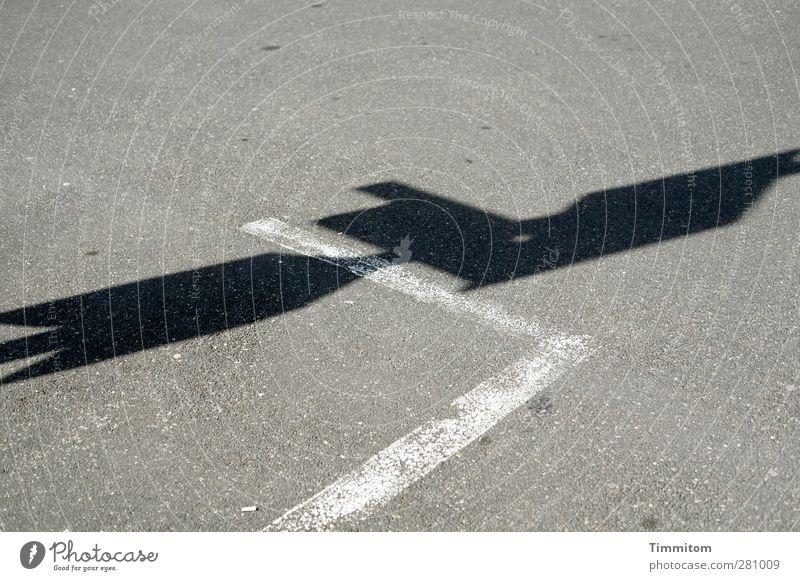 Ich...also... Heidelberg Menschenleer Straße Zeichen Schilder & Markierungen grau schwarz weiß Ordnung ruhig Schatten Markierungslinie Zigarettenstummel