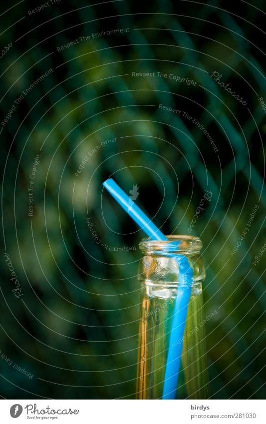 Limonadenpipeline Flasche Trinkhalm leuchten blau grün Durst genießen Kindheit Flaschenhals leer Getränk Maschendrahtzaun gebraucht Anschnitt Farbfoto
