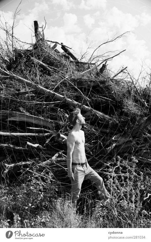 Life Style schön Gesundheit Leben Erholung ruhig Abenteuer Freiheit Mensch Junger Mann Jugendliche 1 18-30 Jahre Erwachsene Umwelt Natur Himmel Baum einzigartig