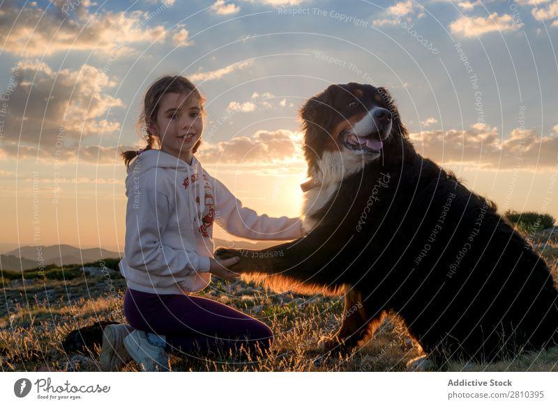 Schönes kleines Mädchen und ihr Hund spielen bei Sonnenuntergang zusammen. Glück groß grün Liebe Haustier Jugendliche Gras Zusammensein Kind Landschaft