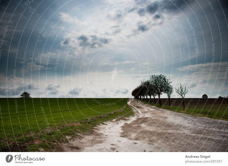 Sein (und) Lassen Himmel Natur Baum Sonne Wolken Landschaft Umwelt Wege & Pfade Horizont Regen Feld Wetter außergewöhnlich Erde nass Schönes Wetter