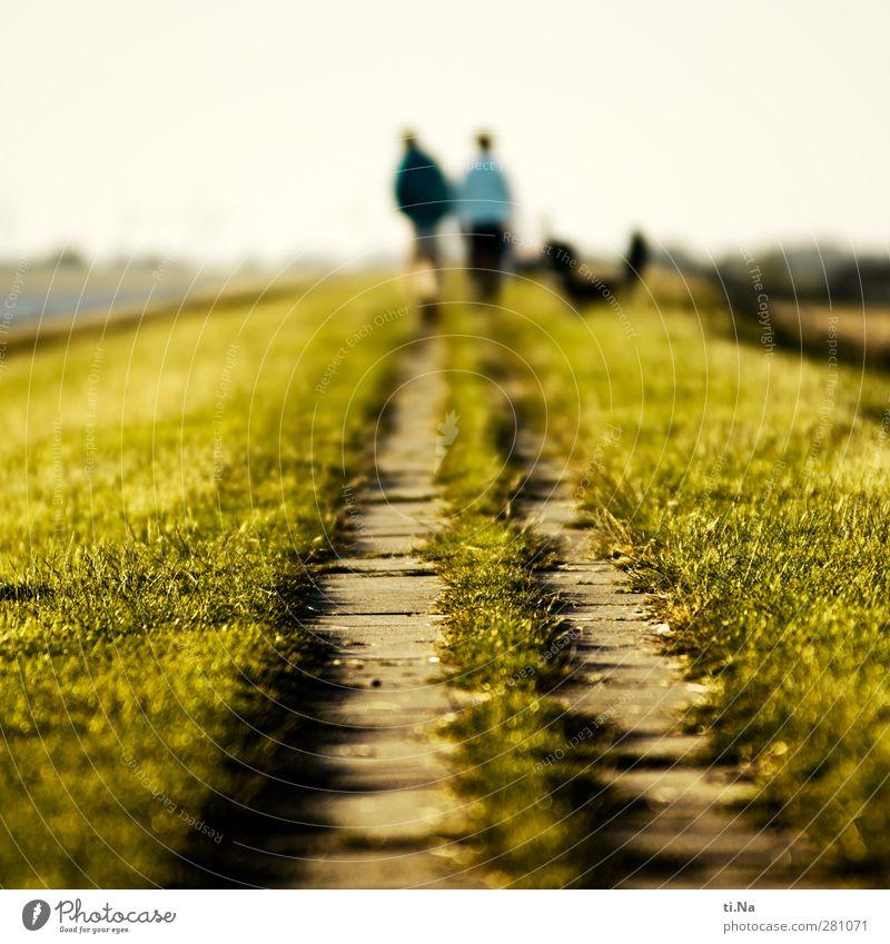 Gipfelweg Himmel Natur blau grün Landschaft Erholung gelb Wege & Pfade Küste Paar Horizont natürlich laufen wandern Tourismus Schönes Wetter