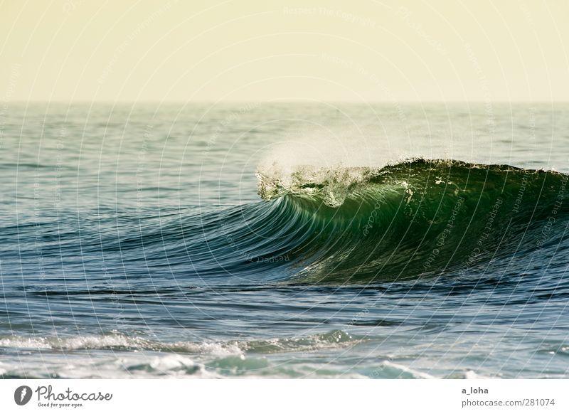 perfect world Umwelt Urelemente Wasser Himmel Wolkenloser Himmel Horizont Sommer Schönes Wetter Wellen Meer ästhetisch nass Sauberkeit blau grün Fernweh Ferne