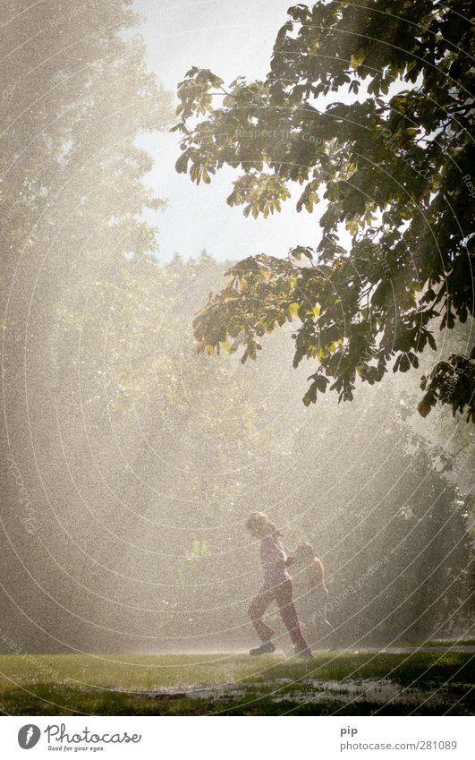 spieling in the rain Mensch Kind Umwelt Natur Wasser Wassertropfen Sommer Klima Schönes Wetter Regen Baum Gras Kastanienbaum Park Wiese Wald laufen springen
