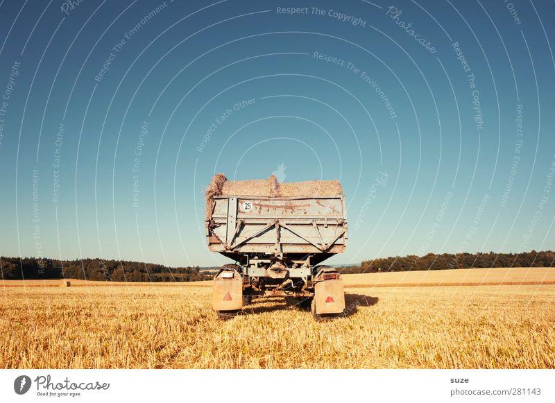 Anhang Getreide Sommer Landwirtschaft Forstwirtschaft Umwelt Natur Landschaft Himmel Horizont Schönes Wetter Wärme Nutzpflanze Feld Fahrzeug Lastwagen Anhänger