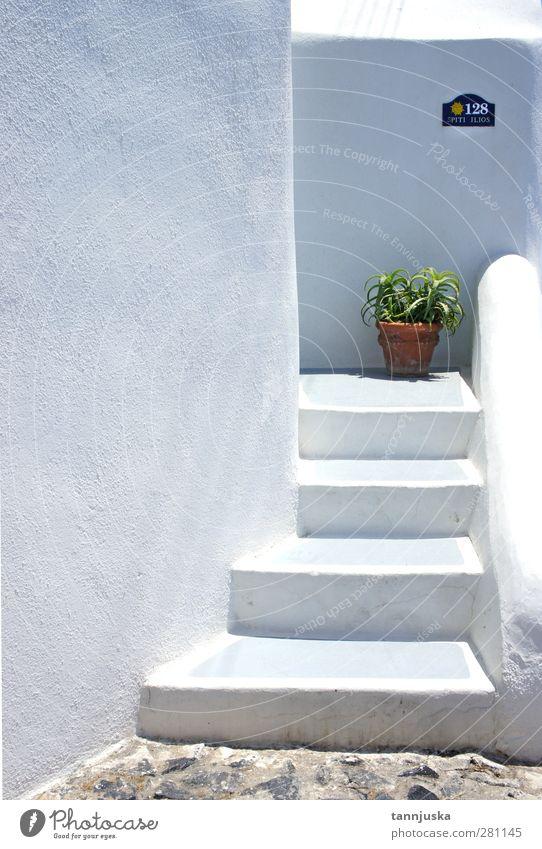 Natur Ferien & Urlaub & Reisen schön grün weiß Pflanze Farbe Sommer Einsamkeit Blume Haus Architektur Gebäude klein Stil Stein