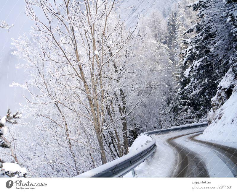 Weiße Kurven Natur Ferien & Urlaub & Reisen weiß Landschaft Winter Wald Berge u. Gebirge Umwelt Straße Wege & Pfade Schnee Tourismus Wetter Eis Ausflug Neugier