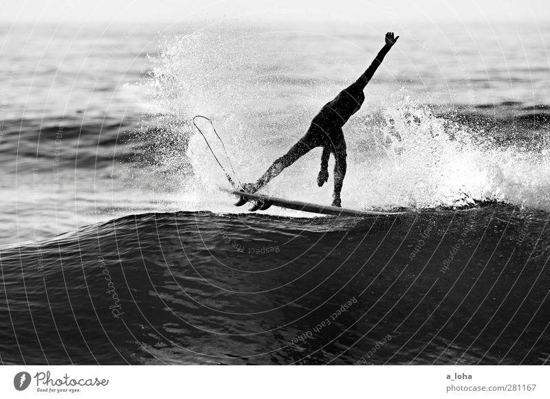 Golden Ride Lifestyle Sommer Meer Wellen Sport Wassersport Sportler Surfbrett Mensch Mann Erwachsene 1 Natur Urelemente Schönes Wetter Küste Bewegung nass