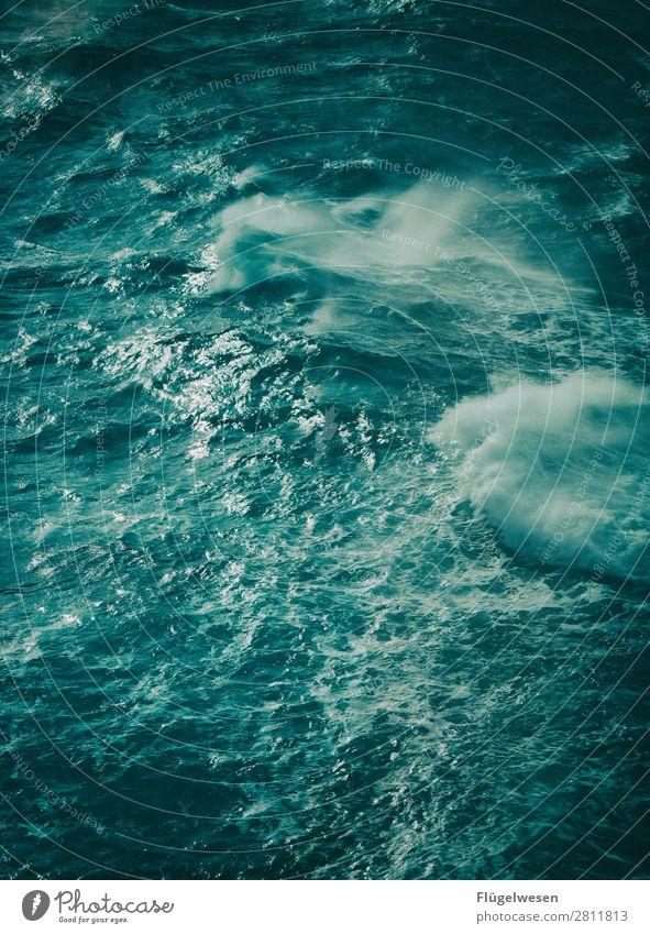 Gischt schlägt ins Gesicht Meer Wellen Wasser Sommer Ferien & Urlaub & Reisen Gewässer Ostsee Nordsee Mittelmeer Wellengang Sturm Sturmfront