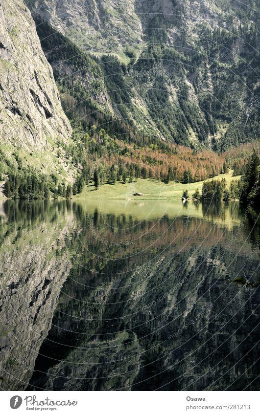 Obersee Landschaft Natur See Wasser Reflexion & Spiegelung Berge u. Gebirge Alpen Berchtesgaden Berchtesgadener Alpen Nationalpark Bayern Salet Alm Königssee