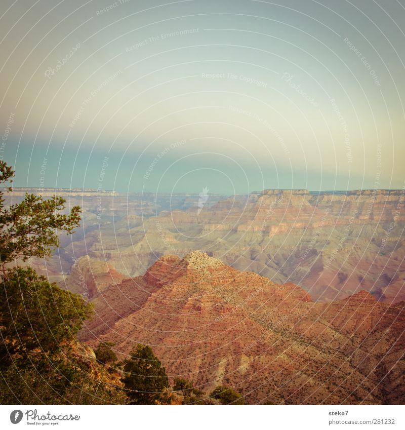 pastell-canyon Himmel Berge u. Gebirge Schlucht Wärme blau braun orange rot Grand Canyon Farbfoto Außenaufnahme Menschenleer Textfreiraum oben Dämmerung