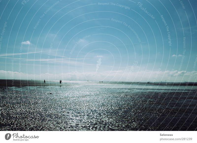 Wattwandern Mensch Himmel Wasser Ferien & Urlaub & Reisen Sommer Sonne Strand Wolken Landschaft Umwelt Ferne Küste Freiheit Menschengruppe Horizont natürlich
